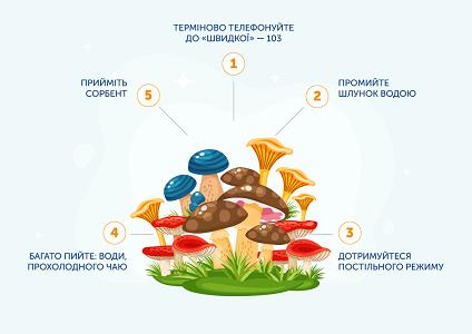 Почастішали випадки отруєння дикорослими грибами